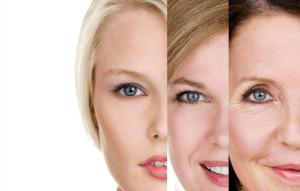 Picture of Anti-aging skincare at Esthetics Training